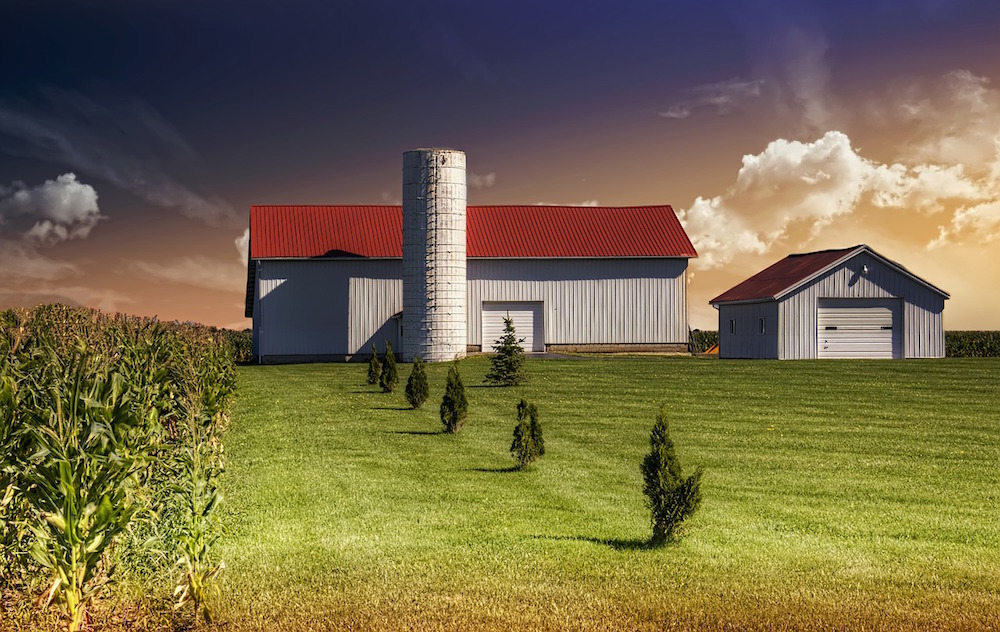A newly assembled steel farming building and a separate steel garage that compliments the corn field and beautiful surroundings of a farm owner